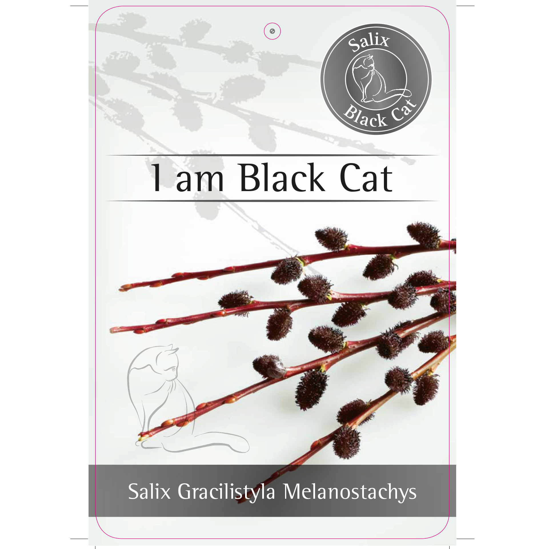 'I am Black Cat'